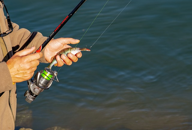 rybářský prut a vnadidlo